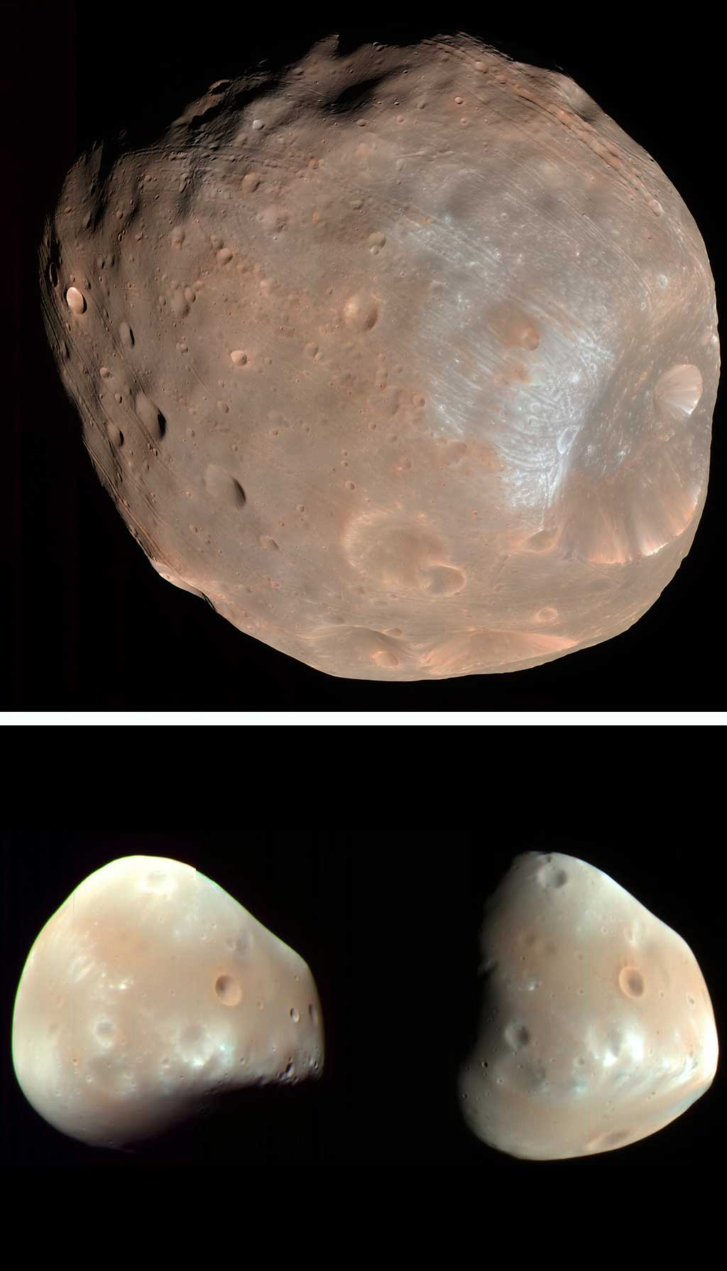 Image of Deimos and Phobos from Mars.