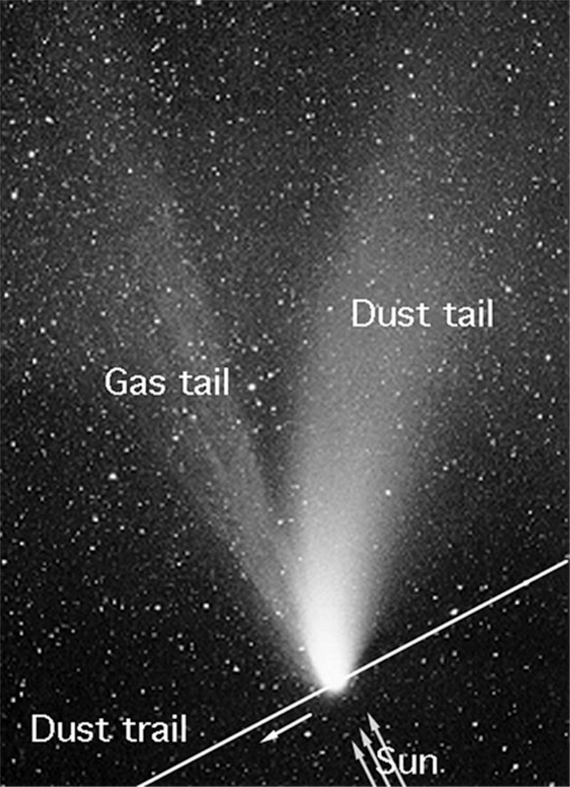 The parts of a comet-- dust tail and gas tail-- as seen from Earth, except we do not see the comet's nucleus.