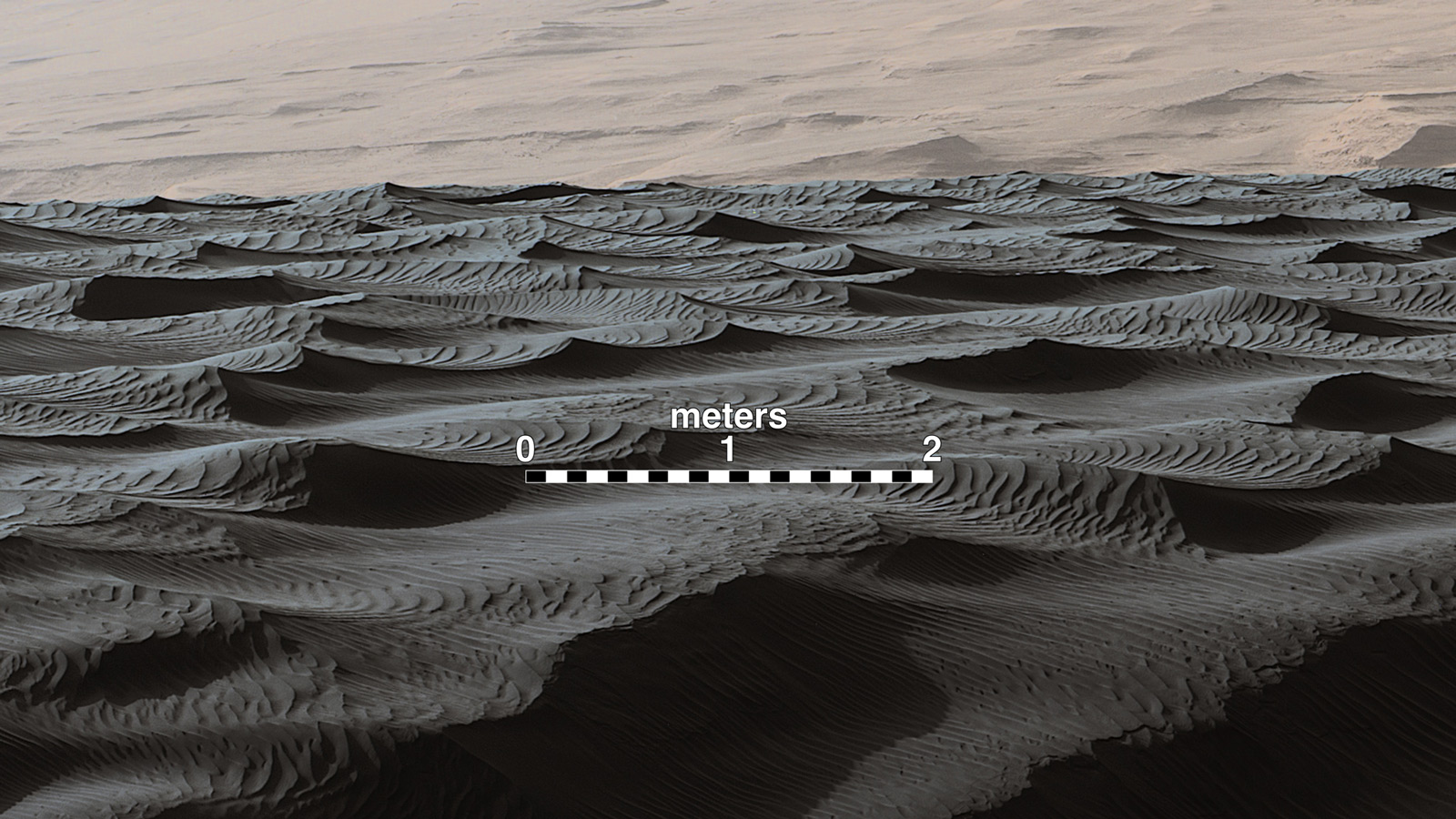 Image of Sand Dunes on Mars: Endurance Craters are dramatic dune fields on the crater floor. Dune crests have accumulated more dust than the flanks of the dunes and the flat surfaces between the dunes.