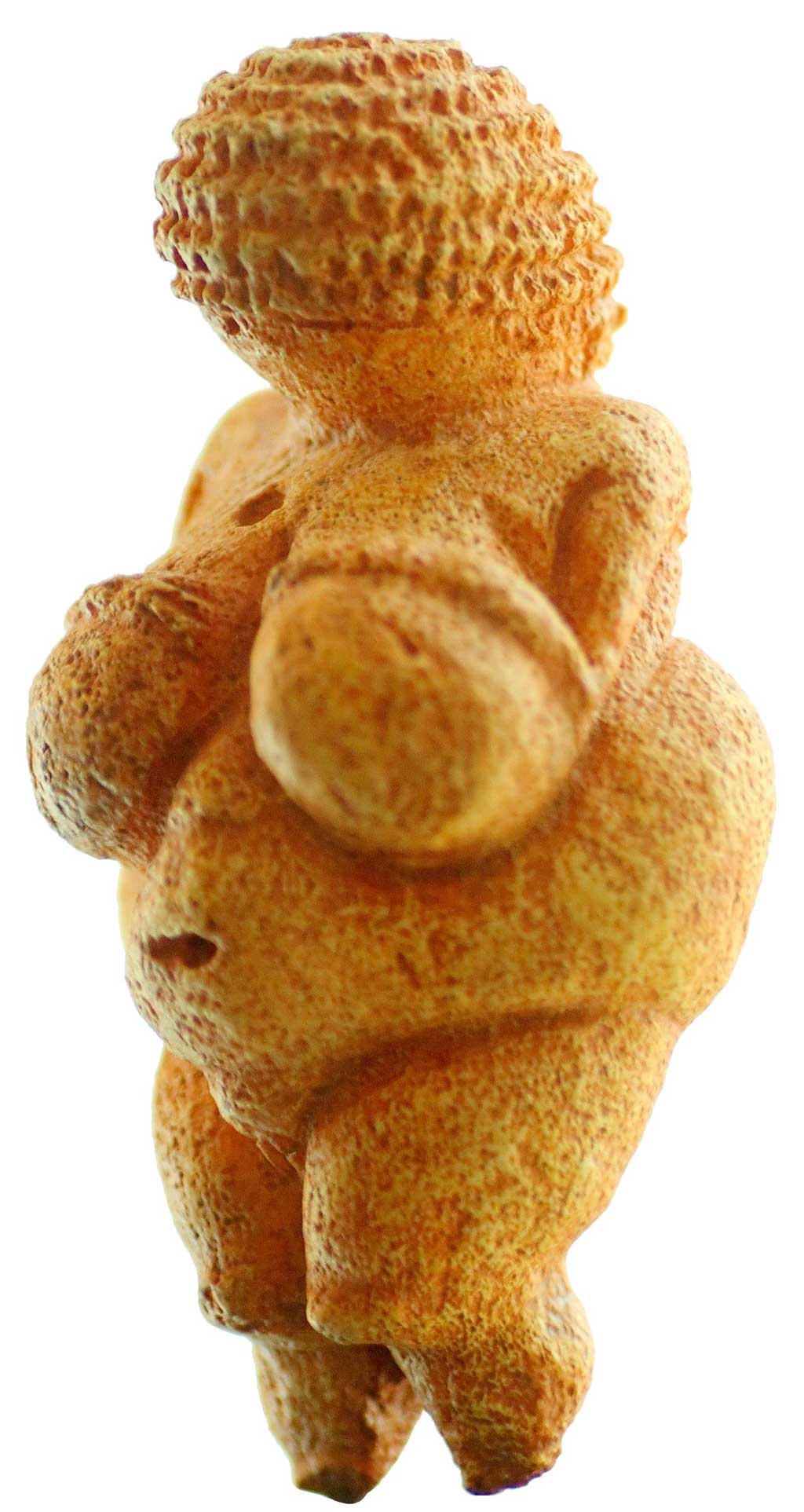 Image of the Venus of Willendorf. The ochre stained statuette included an accentuated bust and pronounced belly to emphasize her heightened fertility. While she is faceless, the carver of the Venus has etched woven hair into the statue.