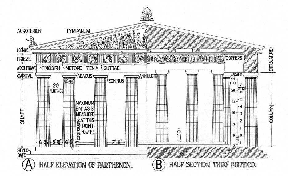 Diagram of the Parthenon illustrating the principal architectural features from the vantage of the façade on the left hand side and the cella (inner temple area) on the right hand side. Most notable here is that the columns outside of the temple stand lower than those inside though the base of the façade and the cella are the same. This gives the illusion that that the elevation of the temple's inner sanctum is greater than elevation outdoors.