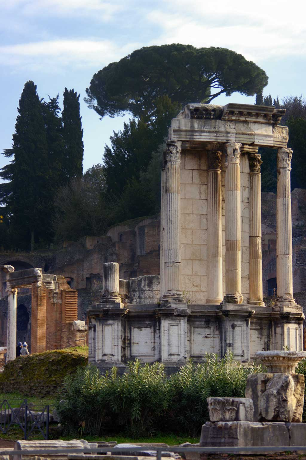Picture of the marble column remains from the Temple of the Vestal Virgins in Rome, Italy.