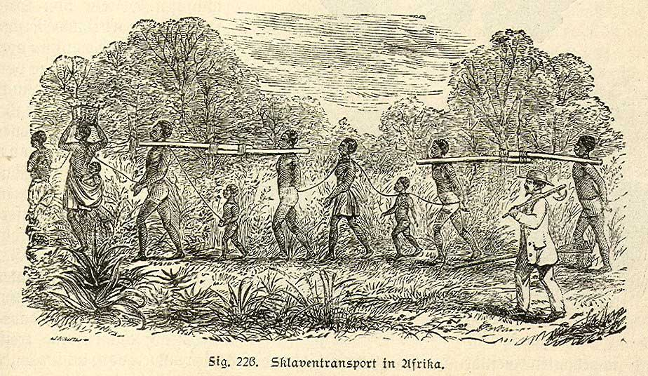 nineteenth century engraving of Slaves being transported in Africa, attached together
