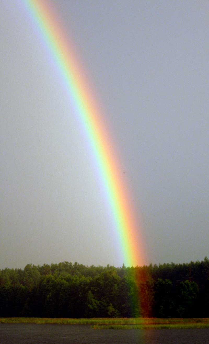 A rainbow is shown. Raindrops act as prisms, breaking the sunlight into its component colors.