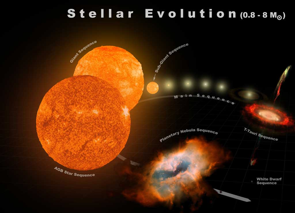 The typical stellar evolution sequence and relative sizes for stars from 0.8 to 8 solar masses is shown.