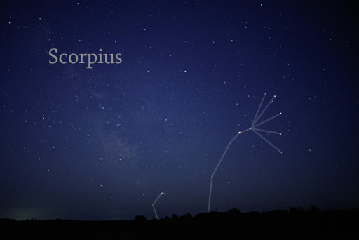 Scorpius, shows the shape of a fish hook, is shown.