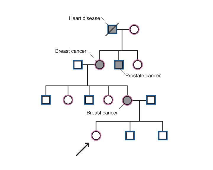 Figure described in text.