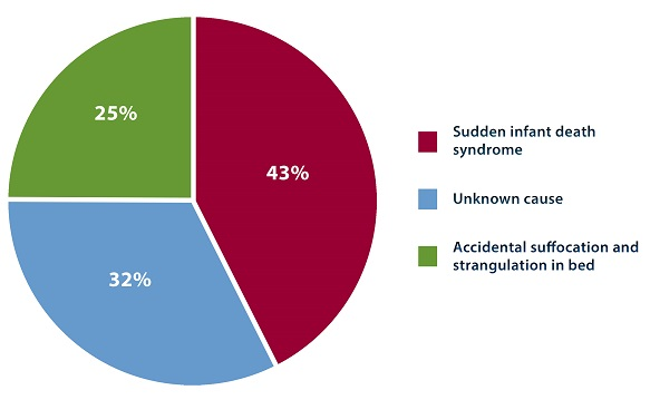 The breakdown of sudden unexpected infant deaths by cause in 2015 is as follows: 43% of cases were categorized as sudden infant death syndrome, followed by unknown cause (32%), and accidental suffocation and strangulation in bed (25%).